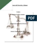 Divisiones Del Derecho y Ramas