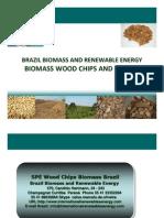 Brazil Biomass and Renewable Energy
