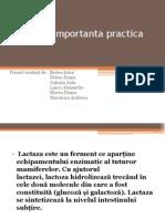 Lactaza – importanta practica