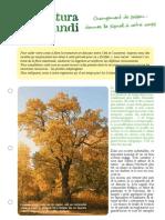 Octobre PDF