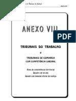 Anexo VIII - Tribunais de Trabalho e Tribubais de Comarca com Competência Laboral