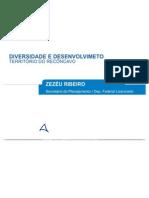 Zezeu Ribeiro - Reconcavo, Diversidade e Desenvolvimento