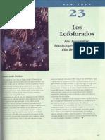 Lofoforados