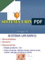Sistema Urinario