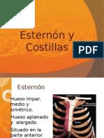 Presentación costillas y esternon
