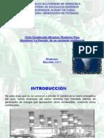 Presentacion de Generacion La Original