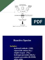 Estres Oxidativo en Membranas Celulares