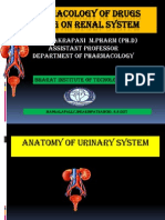Pharmacology of Drugs Acting on Renal System