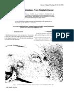 Epididymal metastasis from prostatic cancer
