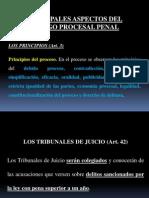 EL JUICIO ORAL EN EL CÓDIGO PROCESAL PENAL