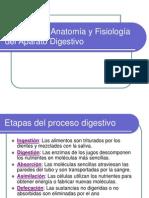 aparato_digestivo (1) (2)