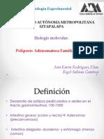 Aspectos Geneticos y Moleculares (Fap)