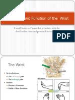 Kinesiology Wrist