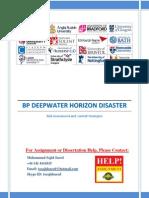 Risk Assessment (BP Deepwater Horizon Disaster)