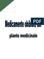 Medicamente Obtinute Din Plante Medic in Ale
