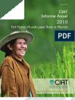 informe_anual_2010