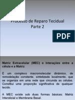 Aula_7_-_Reparo_Tecidual_-_Parte_2_(PDF)