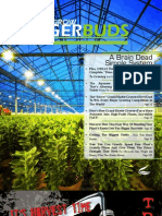 The Bigger Yields Flowering System® Magalog
