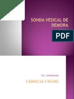 Sonda Vesical de Demora Fabricia