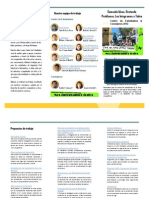 Triptico Plan de Trabajo CE.E ICI - ICINF 2012