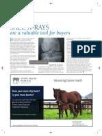 Scone Equine Hospital December 2011 BLUEBLOODS article