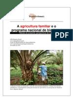 A agricultura familiar e o programa nacional de biodiesel