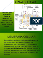 MEMBRANA CELULAR[1]