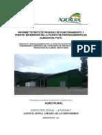 Informe Tecnico de Pruebas de Funcionamiento y Puesta en Marcha