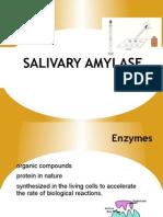 Salivary Amylase