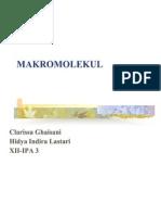 makromolekul