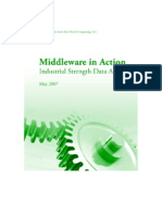MiddlewareInAction_2007