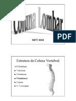 biomeclombar