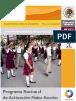 Manual Lineamientos Escola 2010