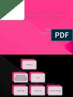 Organizadores Graficos Power Point