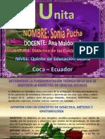 Didactica de las Ciencias Sociales