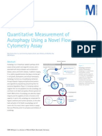 Quantitative Measurement of Autophagy Using a Novel Flow Cytometry Assay
