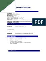 Modelo Resumen Curricular[1]