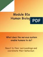 50 Revision Questions B1a