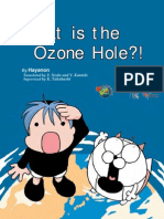 What is the Ozone Hole