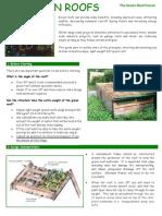 DIY Green Roof Guide