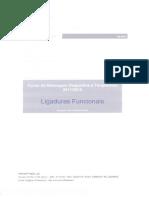 Manual Ligaduras Funcionais