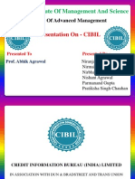 Parmanand Cibil Presentation