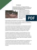 Descubren templo inca en medio de bosque de Parque Arqueológico Sacsayhuaman
