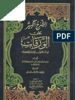 0994-شهاب الدين أحمد بن قاسم الصباغ العبادي-الشرح الكبير على الورقات