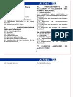 Reglamento AIESEC Peru 2008