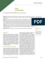 GABA Dualidad Funcional Neurodesarrollo