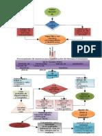 Diagrama de Flujo Tamiz Neonatal