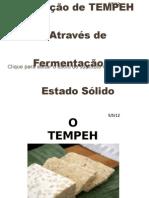 Produção de TEMPEH