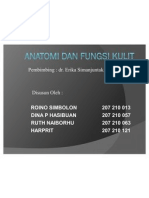 Anatomi Dan Fungsi Kulit