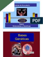 Musculacion Bases Moleculares